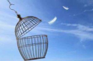 """"""" Relâcher Le Stress pour libérer l'intuition"""""""